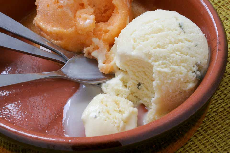 Lemon Verbena Ice Cream Recipe — Dishmaps