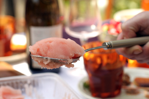 Grapefruit Campari Sorbet - David Lebovitz