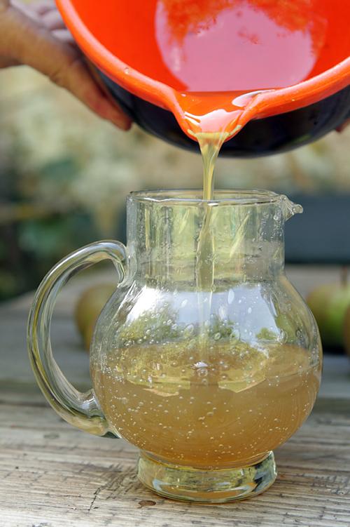 Fresh ginger syrup recipe 2
