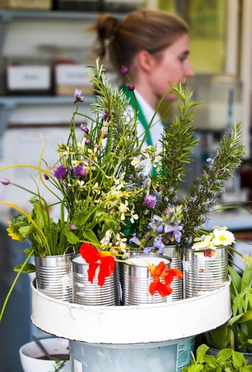Ballymaloe kitchen herbs