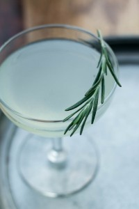 Rosemary Gimlet Cocktail Recipe