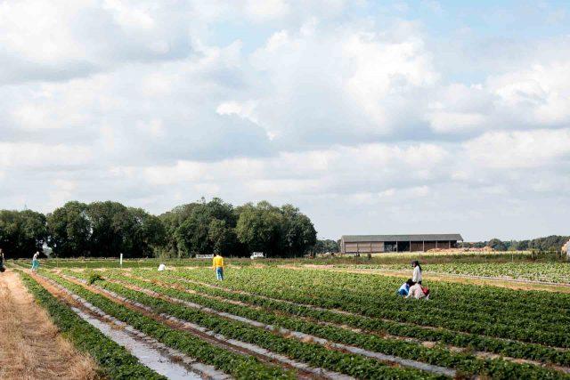 La Ferme de Viltain farm in France
