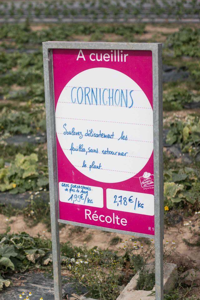 La Ferme de Viltain cornichons sign